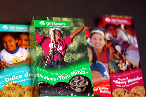 Girl Scout Cookies photo