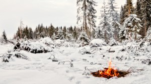 Fire in the Cold