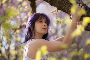 send purple by way of dreams