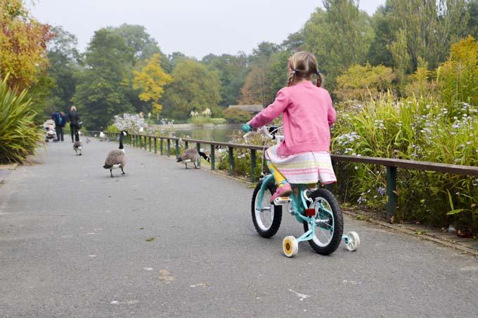 Halfords-bike
