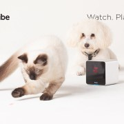 Petcube Camera: Stay connected to your pets when you are not at home