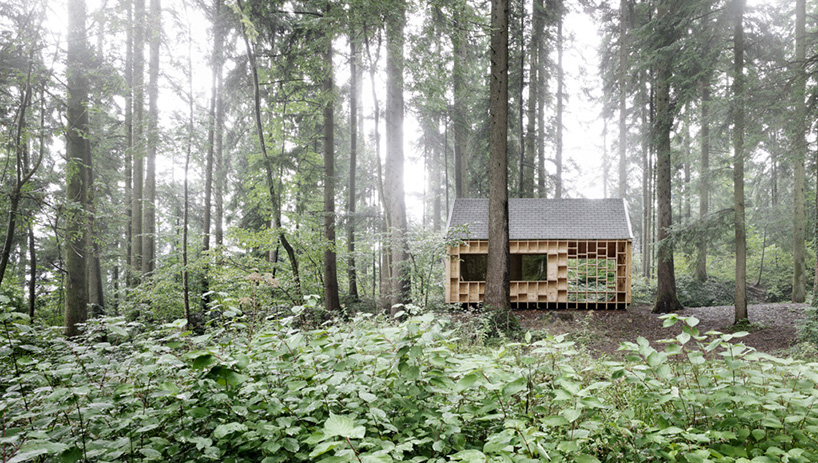 Cabin In The Forest Designed For Children To Explore The