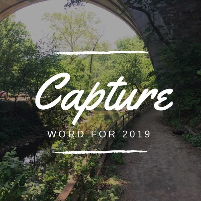 Capture word for 2019 not a pedestrian life