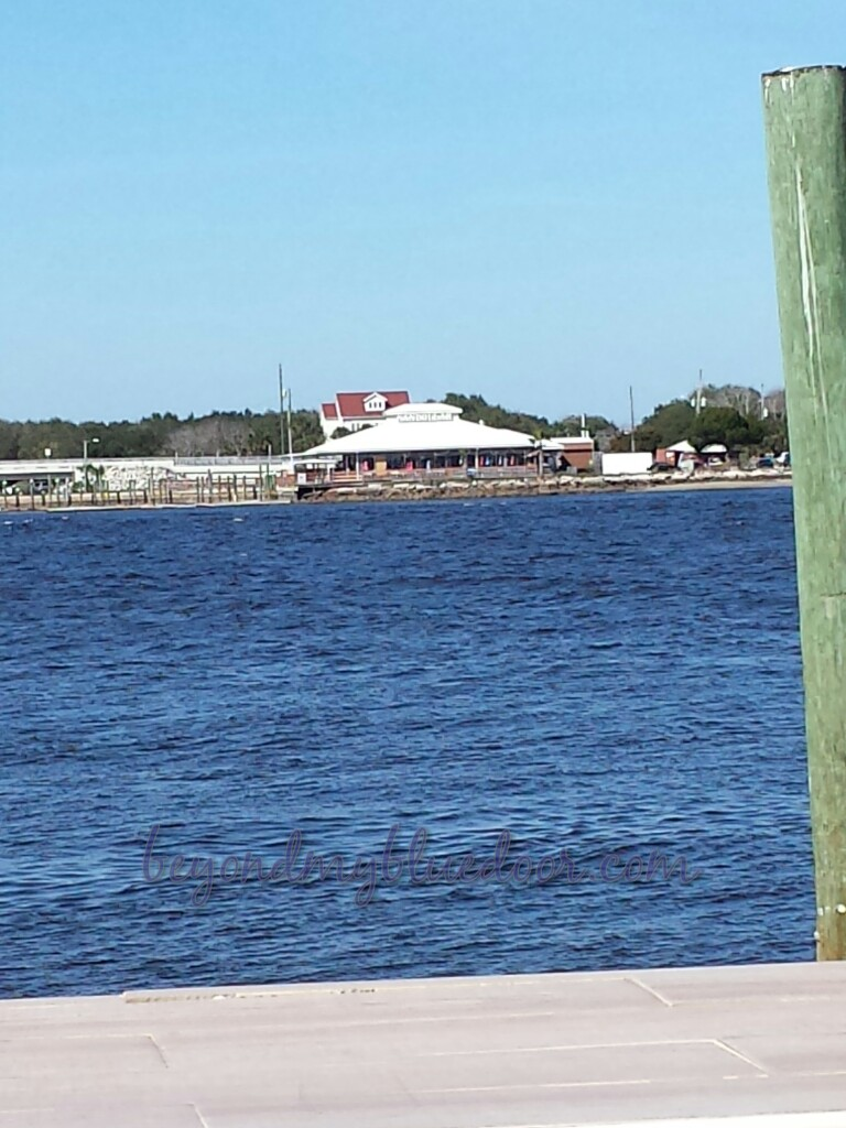 Sand Dollar, Singleton's Seafood Shack, travel, travel blog, traveling, Louisville travel blogger, Jax Beach