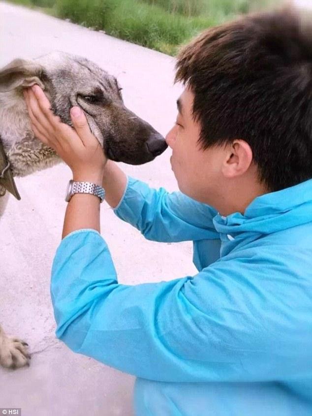 Attivista e cane salvato Festival Yulin
