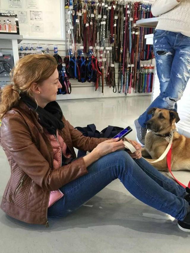 Olivia lleva a Rubio al veterinario