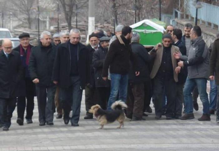 Perro asiste al funeral de su mejor amigo