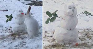 Conejito es captado en cámara mordiendo la nariz de zanahoria de un muñeco de nieve