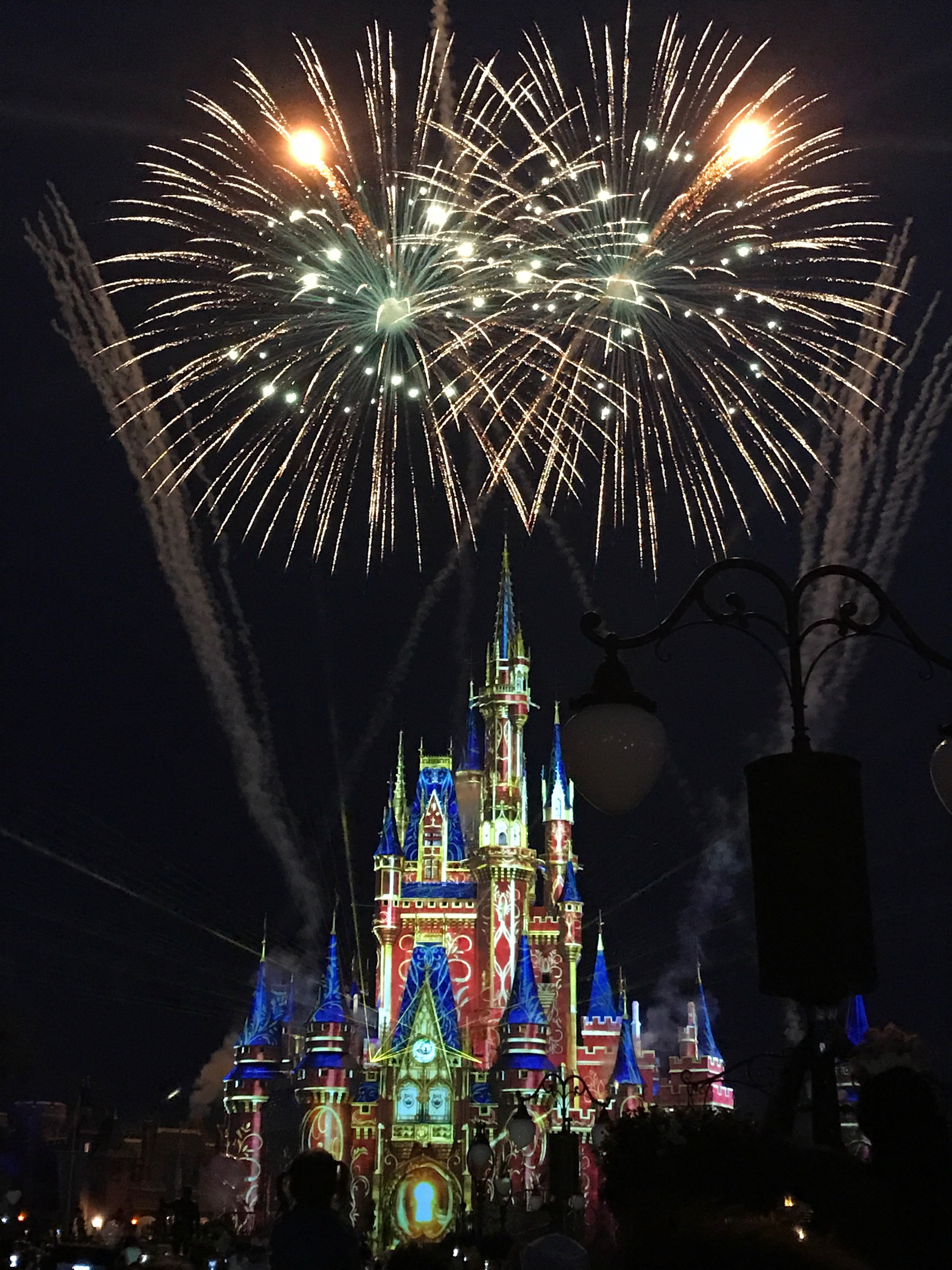 Watch Live: New Year's Eve Fireworks from Magic Kingdom!