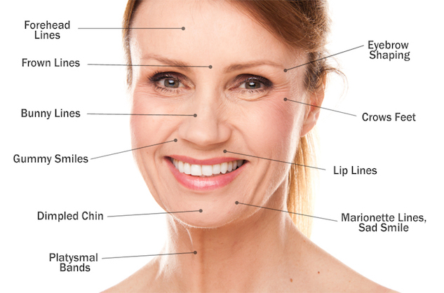 facial-areas