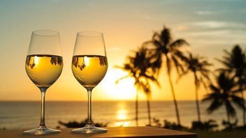 Mejores vinos para el verano