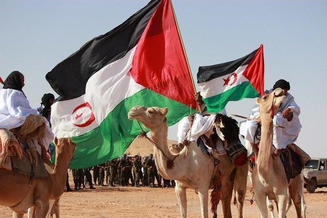 La RASD: 43 años de resistencia, logros y consolidación de un Estado Saharaui (REDACCIÓN) | Sahara Press Service