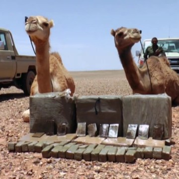 El ejército saharaui intercepta un cargamento de droga procedente del muro marroquí — El Confidencial Saharaui