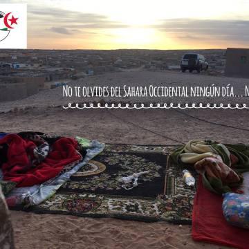 La Actualidad Saharaui de HOY, 25 de julio de 2019 🇪🇭