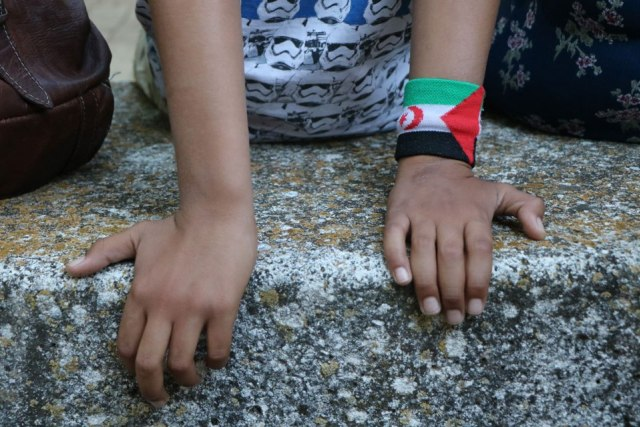 «Saleh nos da otra perspectiva de la situación que están viviendo en el Sáhara» – últimoCero   Noticias de Valladolid