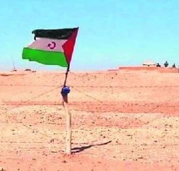 «Marruecos intenta blanquear en Canarias las atrocidades que comete en el Sáhara Occidental» — ECSAHARAUI