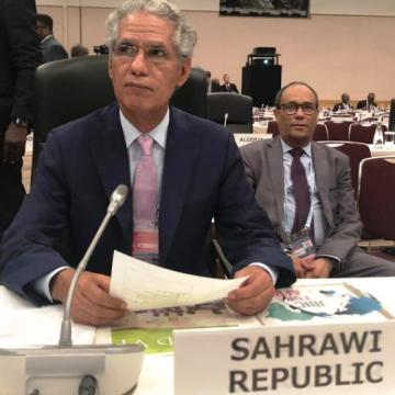 Minister for Foreign Affairs represents Saharawi Republic in 7th Ticad Summit in Japan | Sahara Press Service