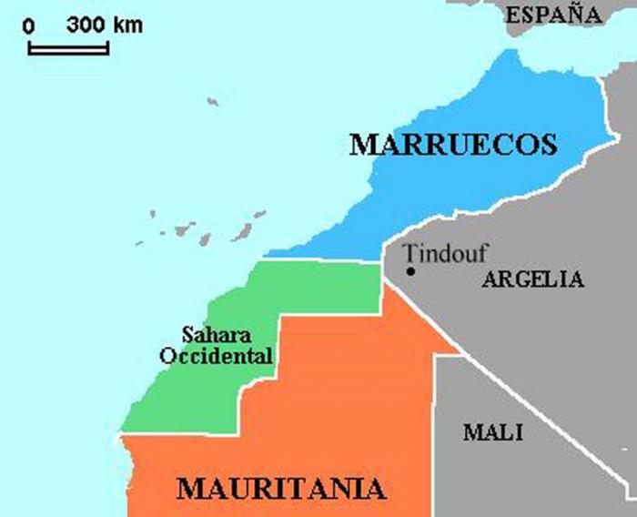 Exigimos  a la Unión Europea un endurecimiento de los controles en frontera para evitar que se introduzcan en el mercado comunitario productos agrícolas cultivados en los territorios del Sáhara Occidental como si fueran de Marruecos