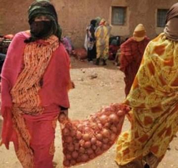 Comisión Europea: Marruecos expolia el Sáhara ocupado para convertirlo en la nueva huerta de Europa | Público