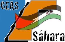 CEAS-Sahara expresa su preocupación acerca de la gravedad por la que atraviesa el conflicto del Sahara Occidental   Sahara Press Service