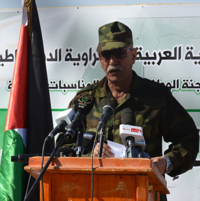 Sahrawi people learned lessons of resistance, sacrifice from 1st November Revolution | Sahara Press Service