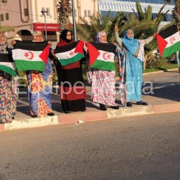 La Actualidad Saharaui: 7 de enero de 2020 🇪🇭