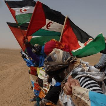 Mundubat @Mundubat: Sobran razones para unirse a la campaña #2720km contra el #MuroDeLaVergüenza construido por Marruecos en el #SáharaOccidental