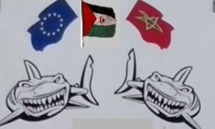 Acuerdo de pesca UE-Marruecos: escándalo en torno a una opinión jurídica del Consejo de la Unión Europea | Espacios Europeos