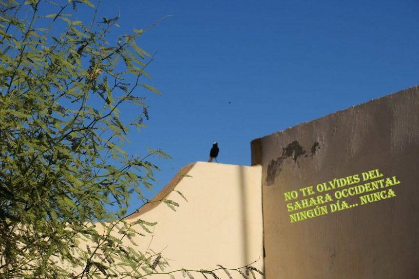 La Actualidad Saharaui: 22 de marzo de 2020 🇪🇭