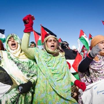 President of Republic felicitates Sahrawi women on Women's Day | Sahara Press Service