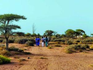 La Actualidad Saharaui: 8 de abril de 2020 (fin de jornada) 🇪🇭