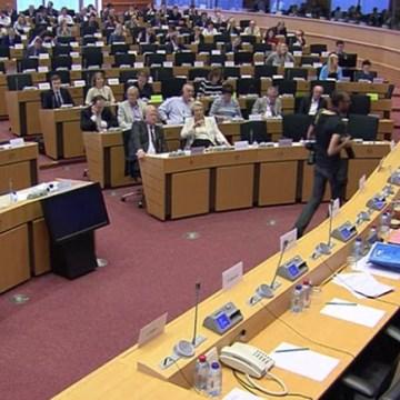 Eurodiputados plantean la situación de los presos políticos saharauis en las cárceles marroquíes ante el subcomité de DD.HH del Parlamento Europeo | ECS