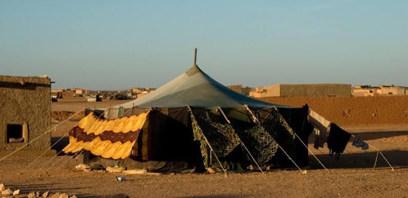 FIRMA AQUÍ la petición al gobierno español para que asuma las responsabilidades de Estado y denuncie la ilegalidad de los Acuerdos de Madrid (1975) sobre Sahara occidental