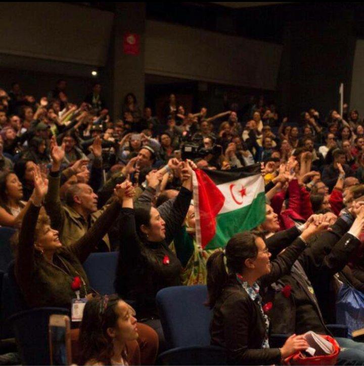 Colombia: el Comité Colombiano de Amistad con la RASD desmonta la propaganda del ocupante marroquí | El Portal Diplomatico