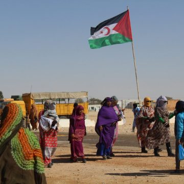 El programa #VacacionesEnPaz2020 alternativo saharaui retomará sus actividades el día 4 de agosto