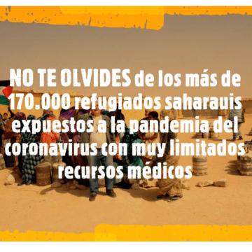 En los Campamentos de Refugiados Saharauis el número de casos sospechosos de coronavirus ha aumentado a 42