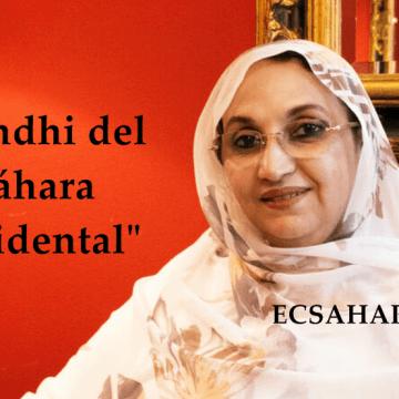 La Actualidad Saharaui: 30 de septiembre de 2020 🇪🇭