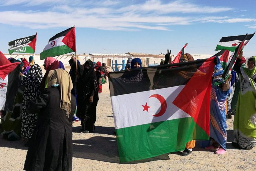 La Actualidad Saharaui: 23 de octubre de 2020 🇪🇭