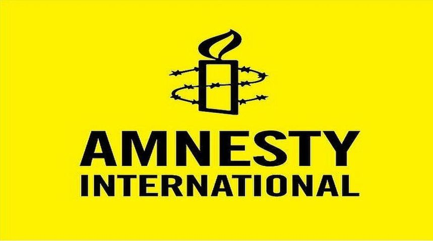 Amnesty International stresses Human rights component is critical to UN Mission in Western Sahara | Sahara Press Service