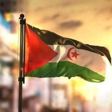 ¡ÚLTIMAS noticias – Sahara Occidental! | 10 de noviembre de 2020