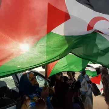 ¡ÚLTIMAS noticias – Sahara Occidental! | 8 de noviembre de 2020