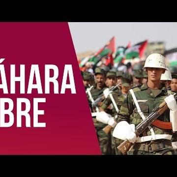 VÍDEO | Alberto Maestre: «El Sáhara está cansado, no se conformará con un alto al fuego y que todo siga igual»