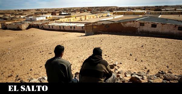 Sáhara Occidental | Violar la vida – El Salto – Edición General