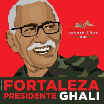 ¡ÚLTIMAS noticias – Sahara Occidental! 3 de mayo de 2021
