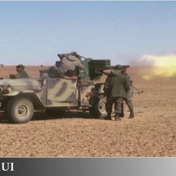GUERRA EN EL SAHARA | Parte de guerra Nº179