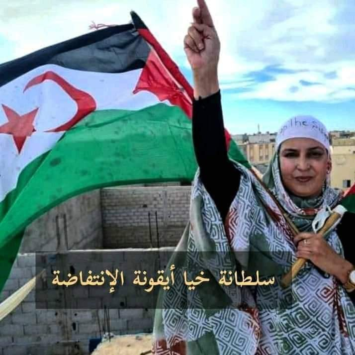 "#WesternSahara: ""Freedom Now"" founder condemns siege and sexual assault of Sultana Khaya and joins international legal team to advocate for her peaceful activism 