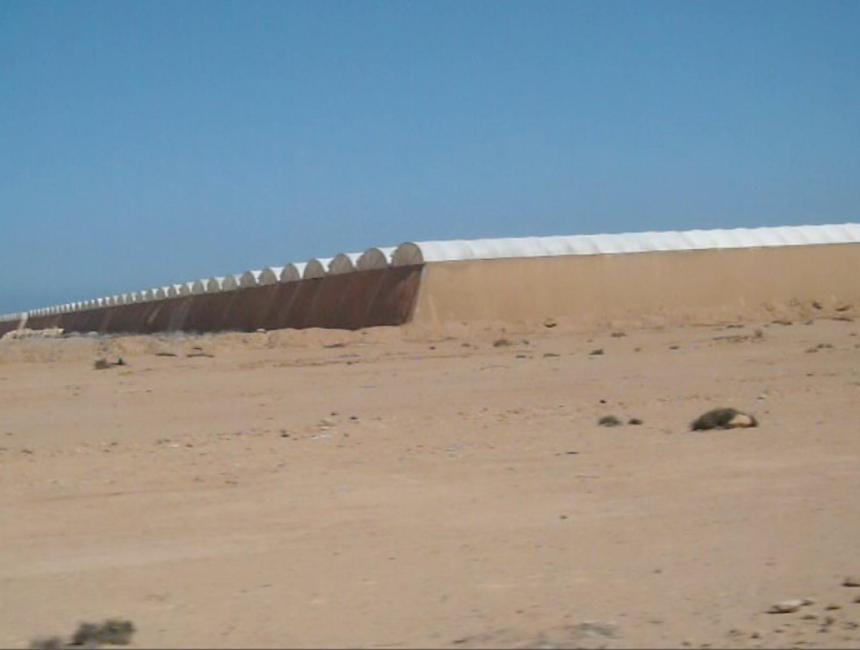 Marruecos vende como propios los tomates del Sáhara | La Voz de Almería