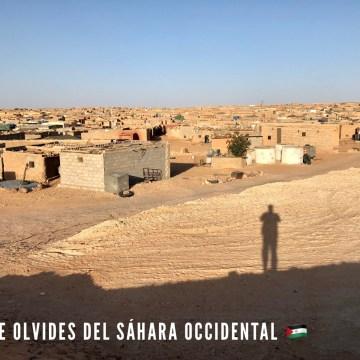 ¡ÚLTIMAS noticias – Sahara Occidental! 3 de agosto de 2021