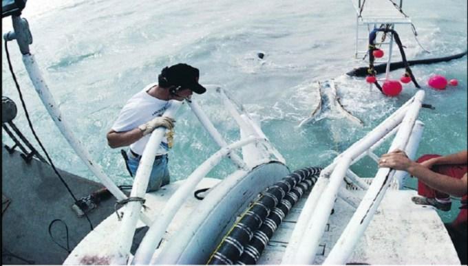 sambungan kabel dalam laut dari surabaya sampai hongkong