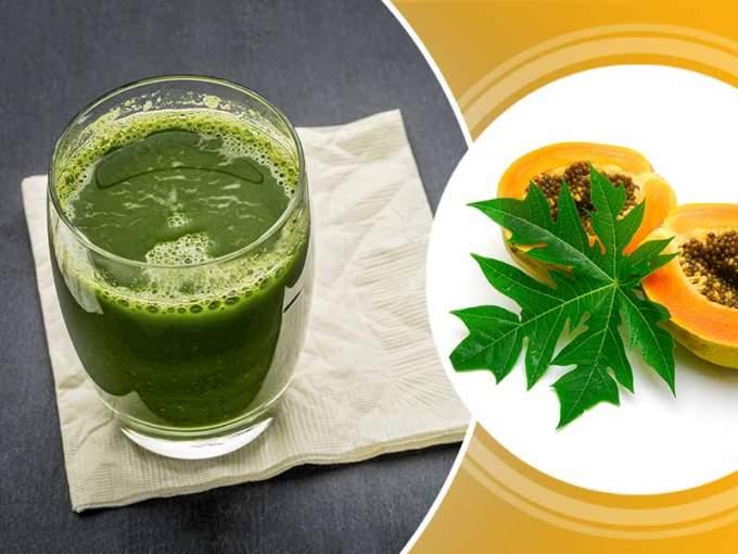 manfaat daun pepaya untuk ibu hamil